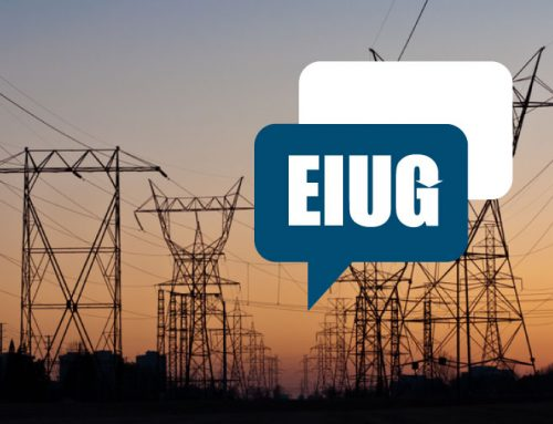 EIUG Comment On Proposed Strike By Eskom Unions